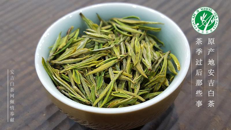 安吉白茶成2020最具品牌带动力茶品牌