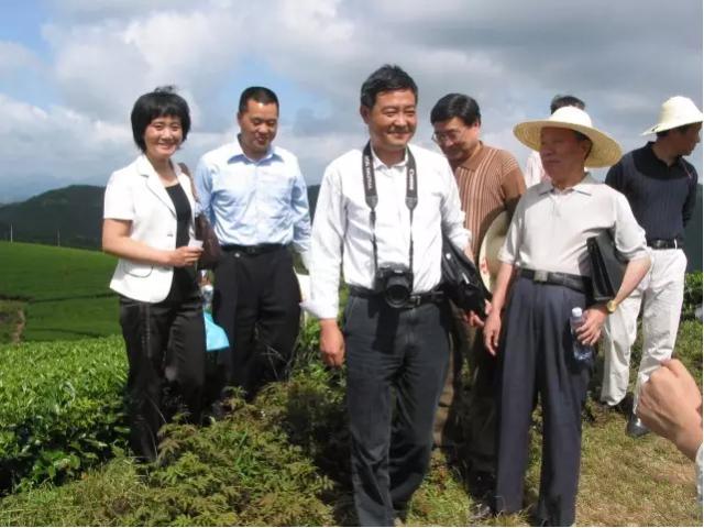 袁弟顺:白茶的护肝效果研究