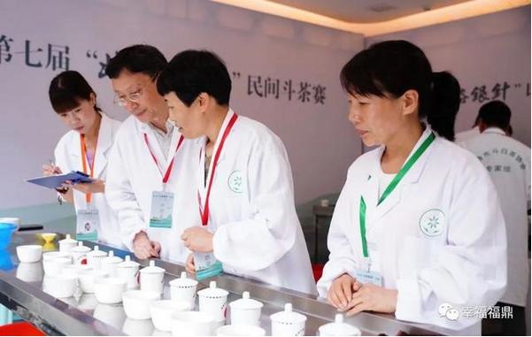 斗茶竞技助力白茶发展,这股民间力量不可忽视……