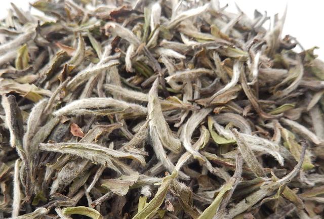 白茶中极品——野生白牡丹