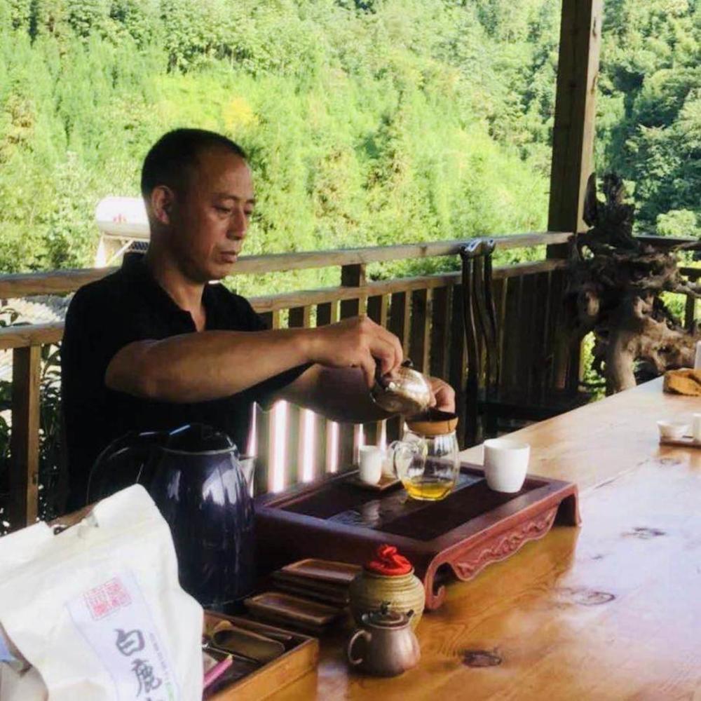 彭州白鹿白茶:喝上一碗才算尝到了白鹿的真滋味