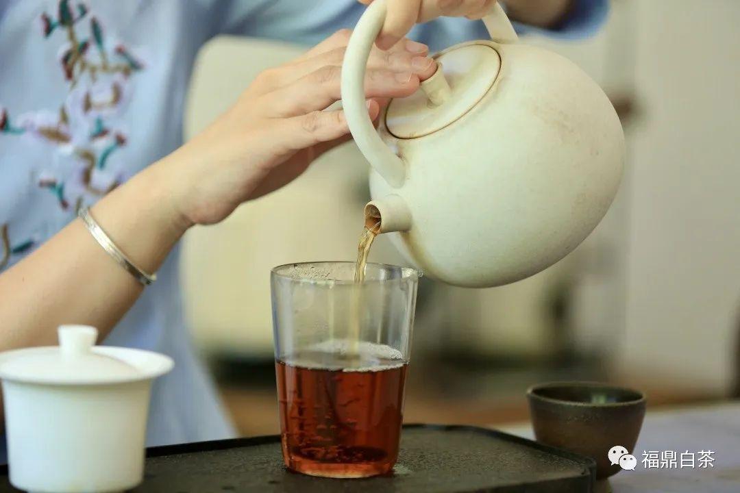 我与白茶结缘