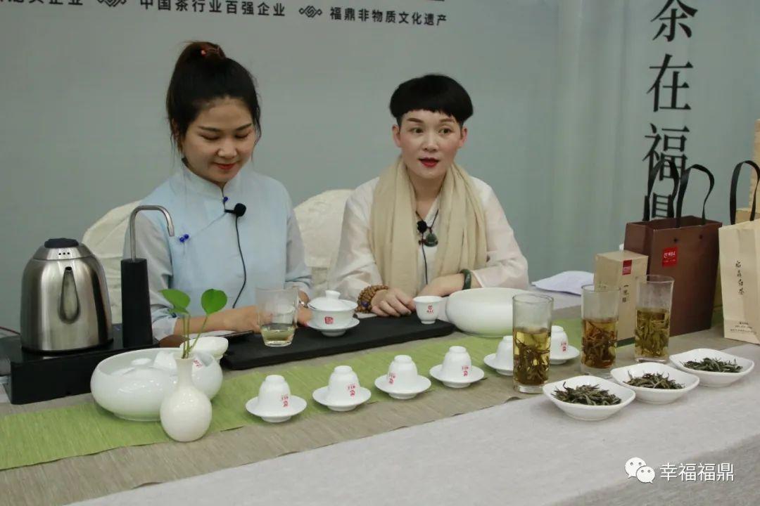 最近福鼎茶界有什么盛事?今天的斗茶赛就是一件!