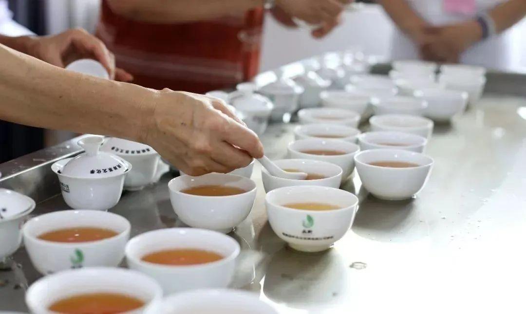 大代志!朋友圈刷屏!全国爱喝茶的人速看!