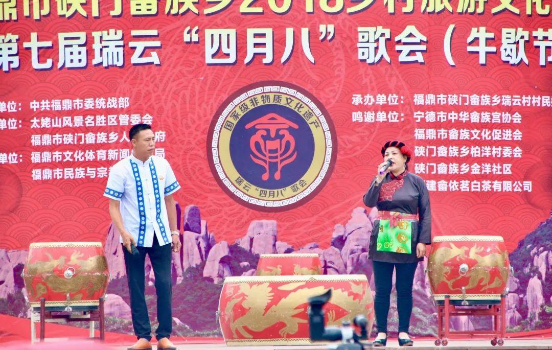 闽东畲族:温饱药,菁苎茶