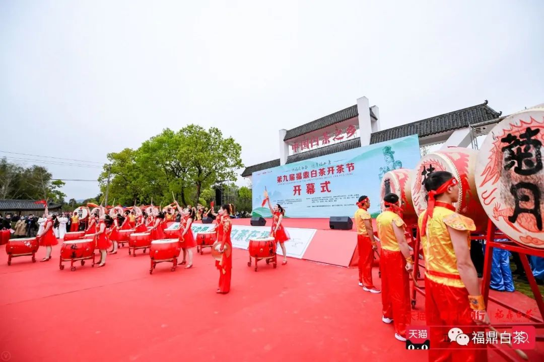 第九届福鼎白茶开茶节成功举办