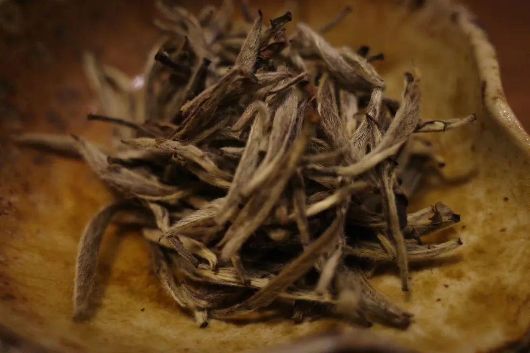 买了白茶要怎么保存?家庭储藏白茶指南