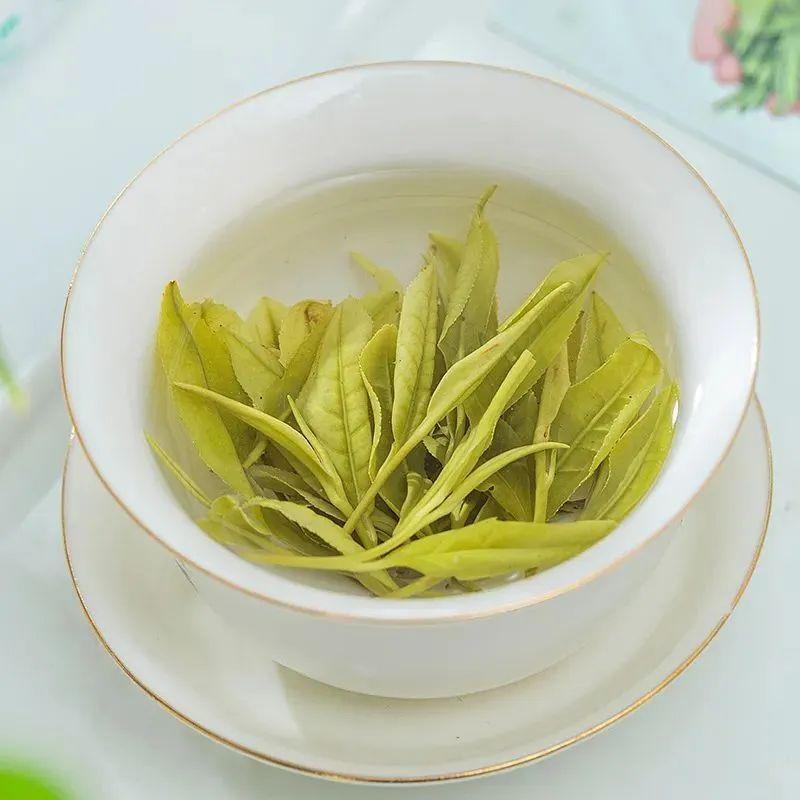 这杯堪称鸡汤的安吉白茶,鲜得让人流口水!