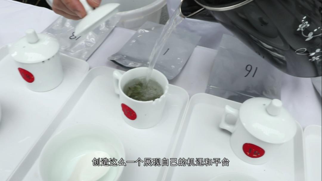 """这场斗茶赛它只为白茶珍品——""""白毫银针""""而来!"""