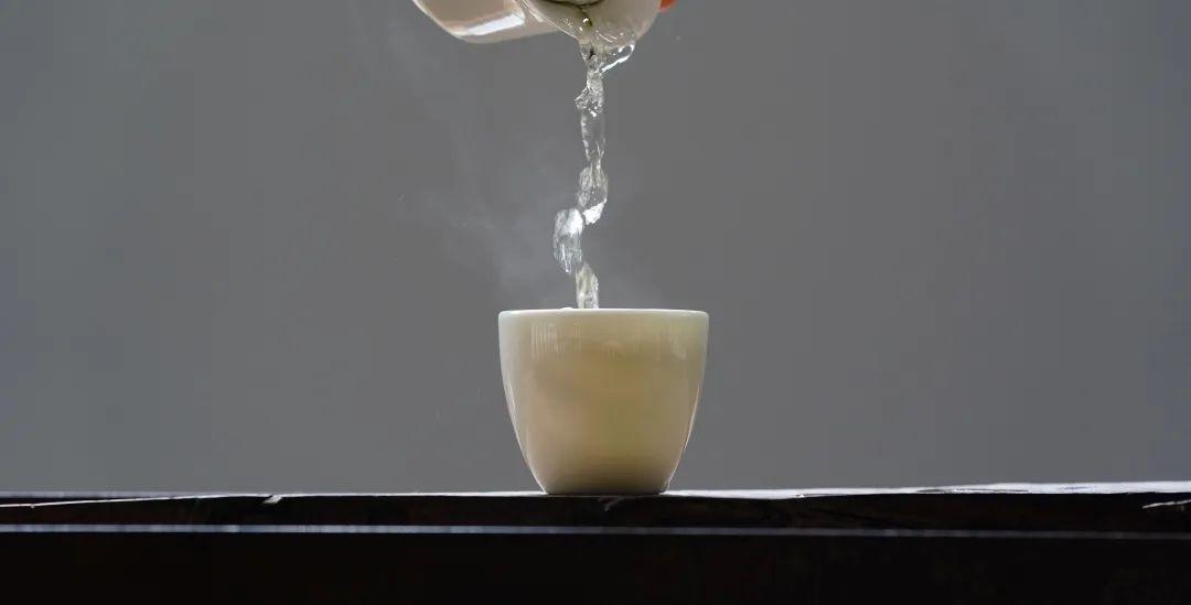 福鼎白茶新歌:金池《一盏茗》