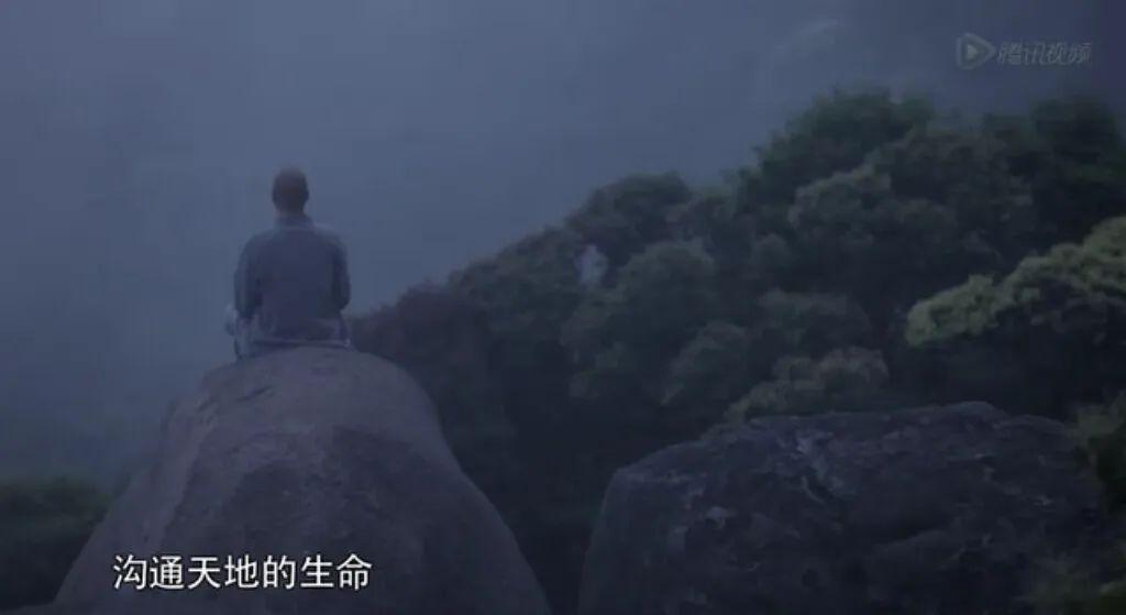 """陆羽《茶经》所载""""白茶山""""确在福鼎"""
